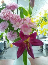 お花130520.jpg